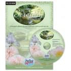CD ROMS & Inkjet paper