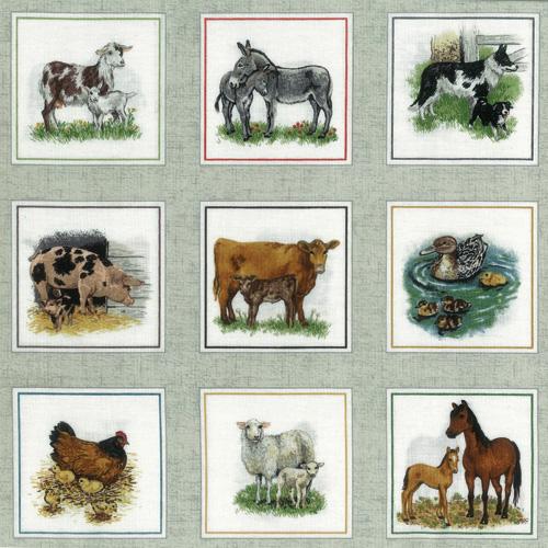 Farmyard Colour Border Fabric Panel