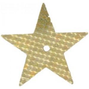 Gold Hologram Large Star Sequin