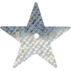 Silver Hologram Large Star Sequin
